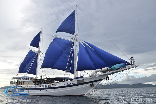 indo-siren liveaboard boat