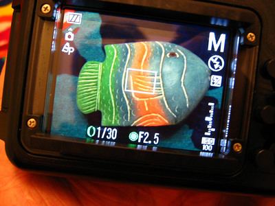 canon s90 fisheye fix housing